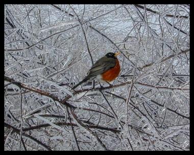 icestorm4-a